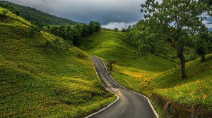 Winding Road Through Green Hills HD Desktop Background